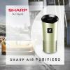 Lọc không khí oto Sharp IGGC2EB